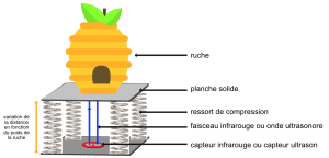 ruche sur ressorts