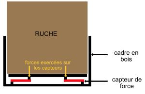 capteur de force 1