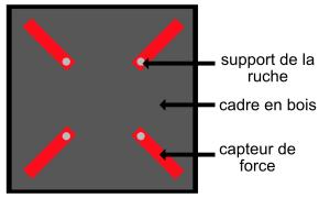 capteur de force 2